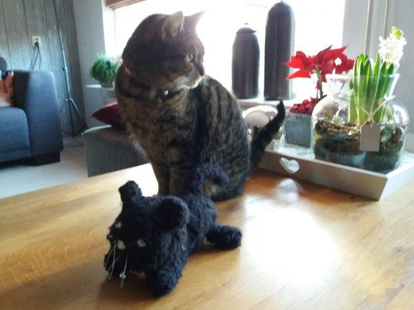 Knuffel kat naast levende kat