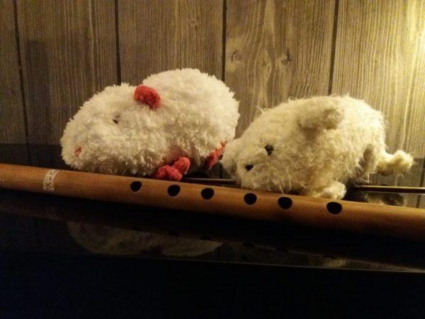 Twee knuffel cavia's