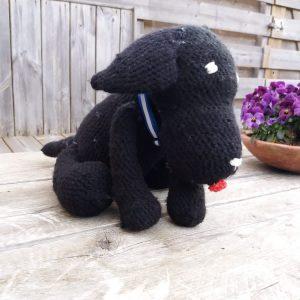 Labrador - zwart