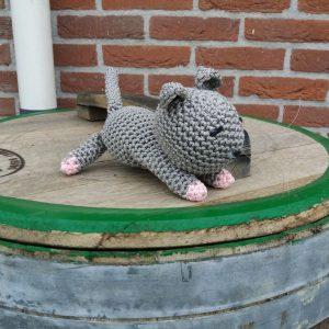 Kitten - grijs - roze voetjes
